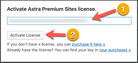 Enter License Astra Premium Sites Plugin